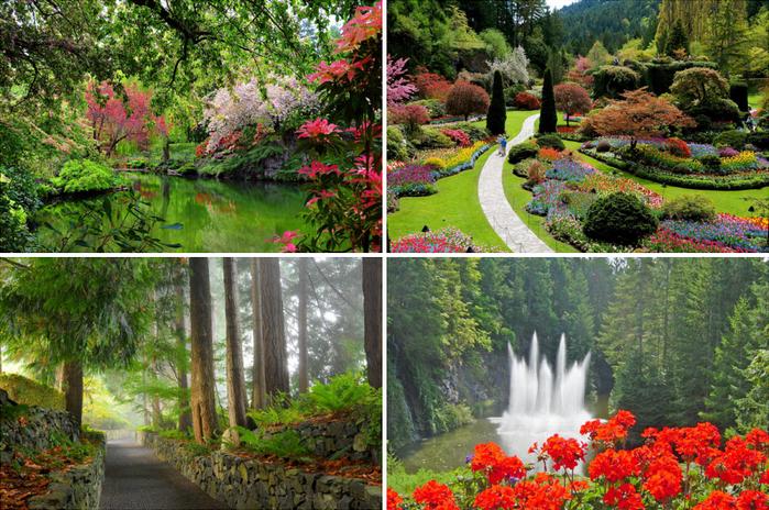 Как создавались и как выглядят знаменитые сады Бутчартов (видео в статье)/2565092_Zatonyvshii_sad1 (700x464, 606Kb)