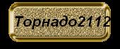 ������ ������� (170x70, 18Kb)