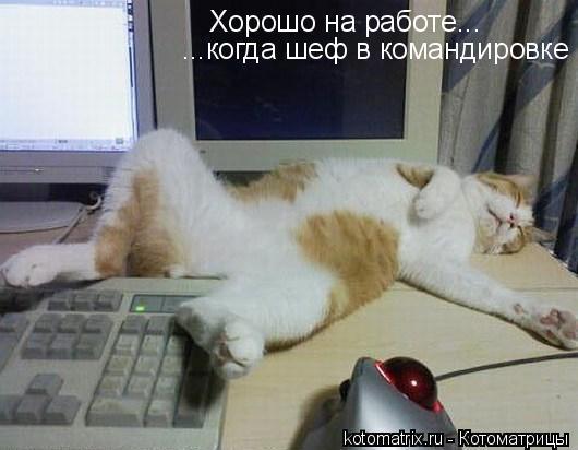 0_16803_3cb67946_XL (530x412, 31Kb)