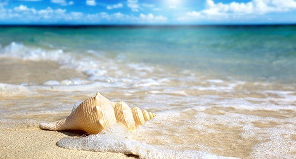 Обои на рабочий стол море песок