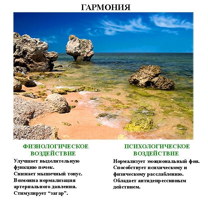 волшебные_картинки_volshebnye_kartinki-2 (700x675, 305Kb)