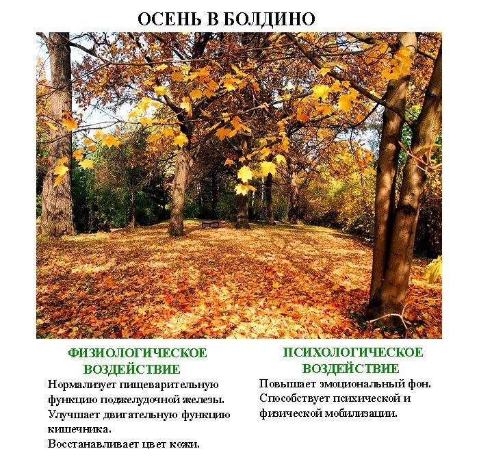 лечебные_картинки_leghebnue_kartinki-3 (700x675, 491Kb)