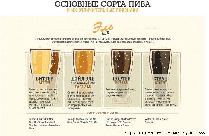 beer-infogr - копия (700x457, 147Kb)
