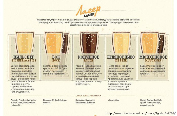 beer-infogr (1) (700x461, 165Kb)