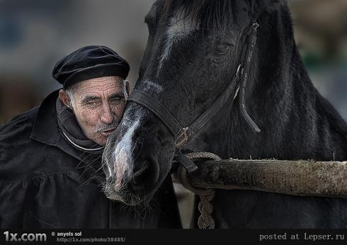 fotografii-starikov-490-28 (490x346, 146Kb)