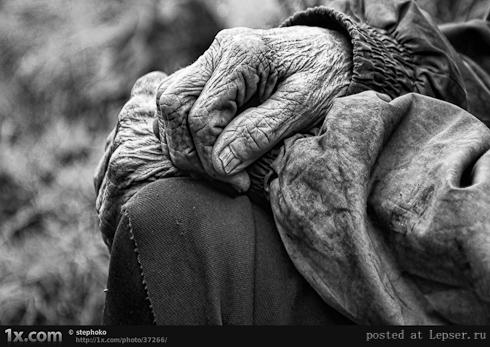 fotografii-starikov-490-69 (490x347, 157Kb)