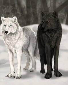 Два волка.