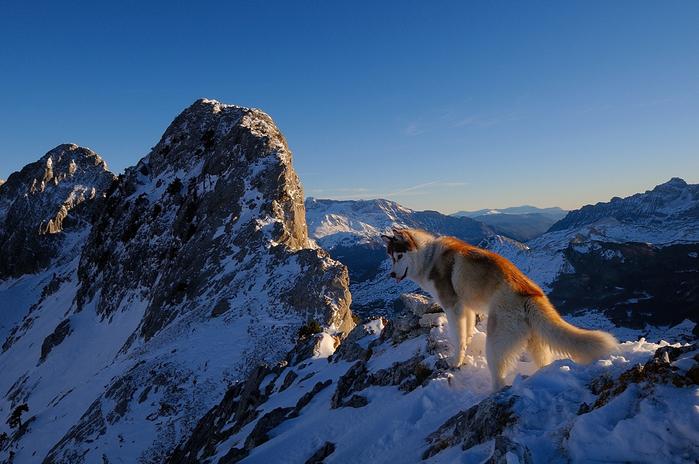 горы фото 13 (700x464, 408Kb)