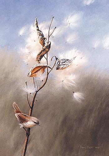 2- Nancy Howe - художник- (350x502, 91Kb)