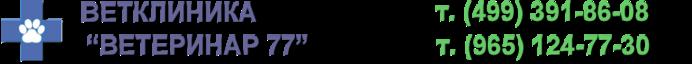 logo (700x64, 41Kb)