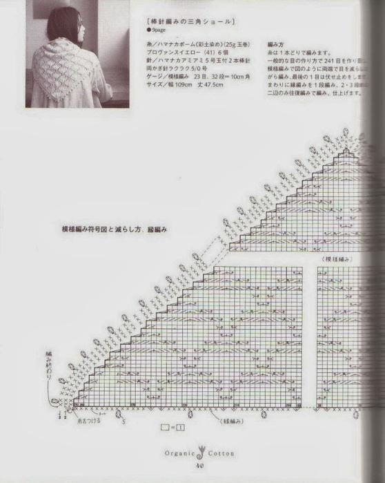 DSCN0786 (558x700, 199Kb)