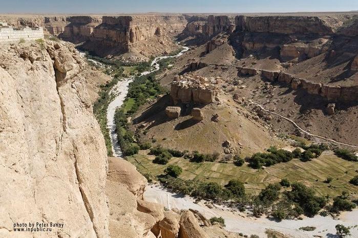 Socotra19 (700x466, 307Kb)