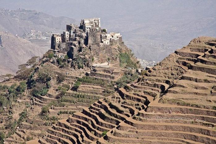 Socotra20 (700x466, 315Kb)