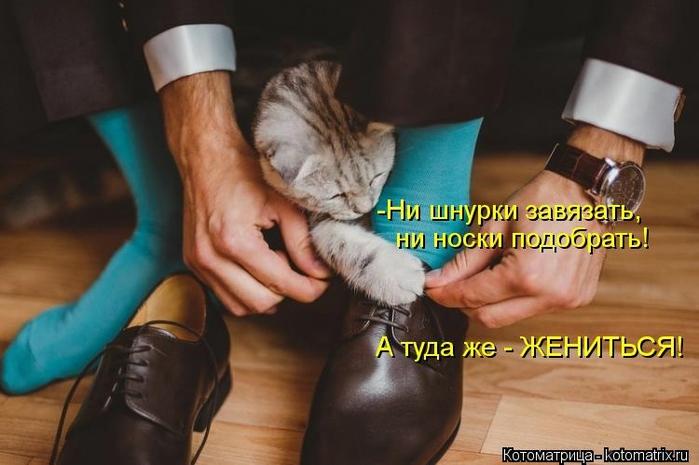 kotomatritsa_5G (700x465, 188Kb)