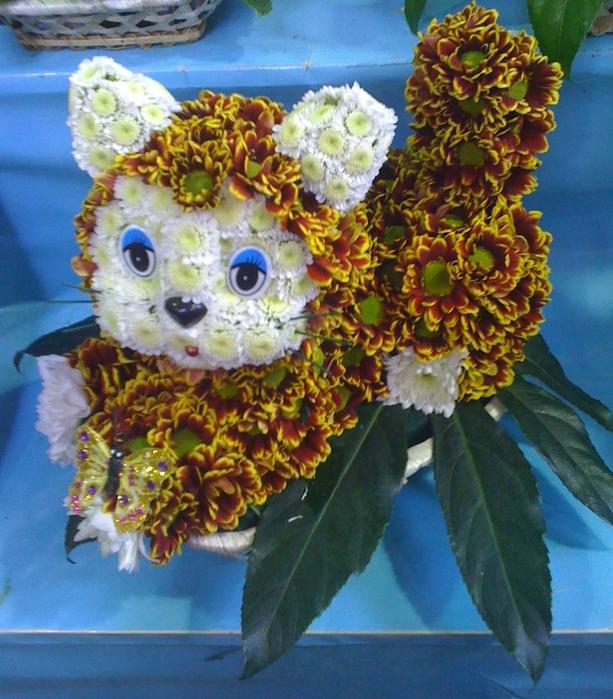 Кот из живых цветов своими руками 9