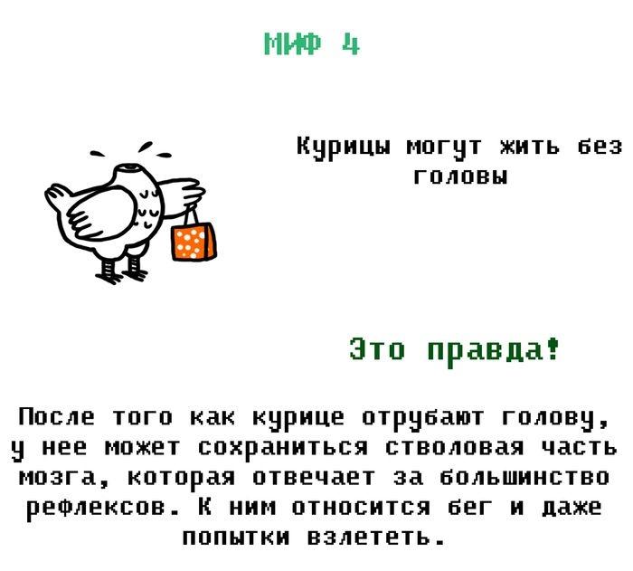 1380779565_loj_04 (700x631, 112Kb)