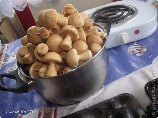 Сладкие шоколадные грибочки. Рецепт (8) (520x390, 107Kb)