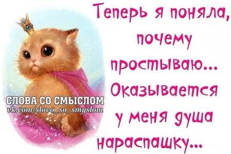 1380854163_frazochki-15 (450x300, 88Kb)