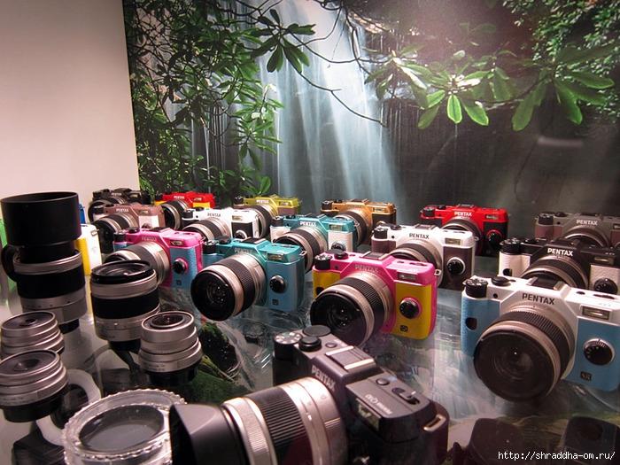 фотовыставка 2013 в Питере (1) (700x525, 309Kb)