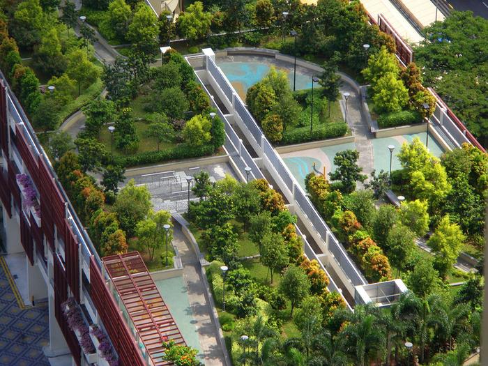 сад на крыше фото 1 (700x525, 682Kb)