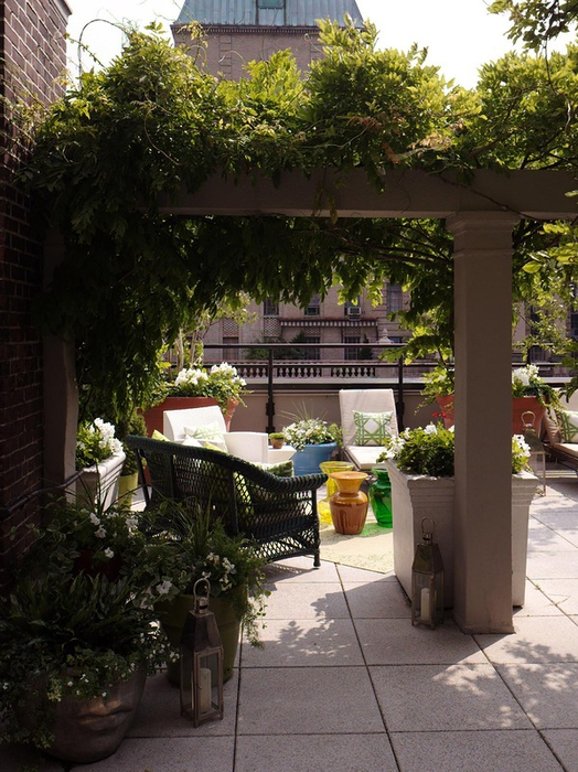 сад на крыше фото 9 (524x700, 456Kb)