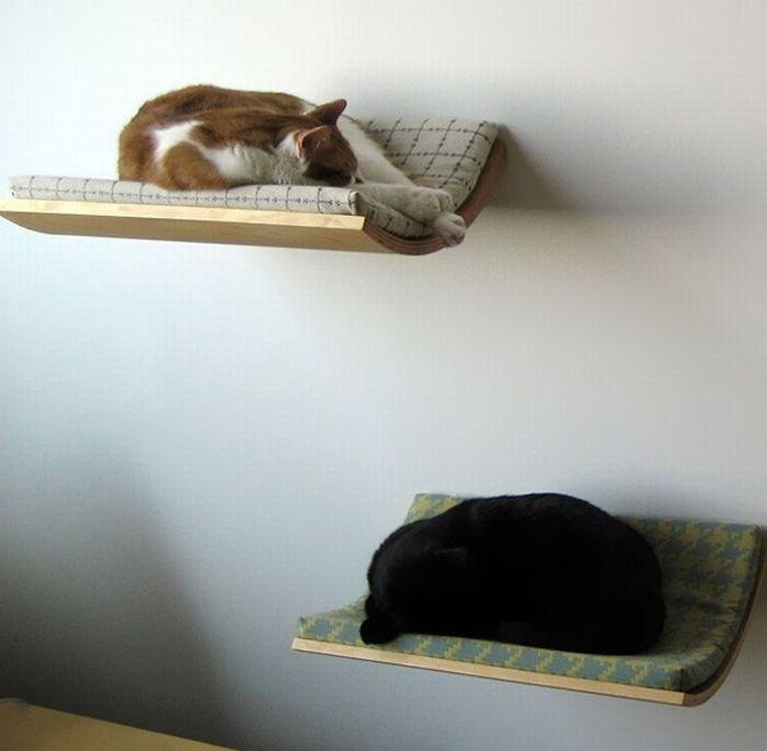 Фото глядя на спящую подругу 25 фотография