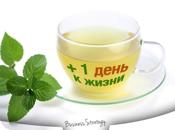 природные энергетики/1380934874_prirodnuye_toniziruyuschie_sredstva (604x451, 32Kb)