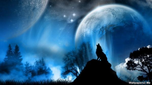демотиваторы смотри и радуйся/5402287_howlingwolf_1923859664 (600x338, 25Kb)