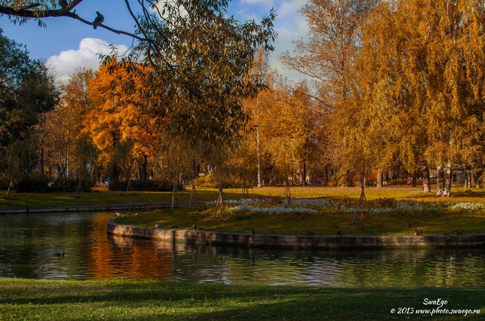 3686296_Autumn_Kolpino_002 (700x463, 333Kb)