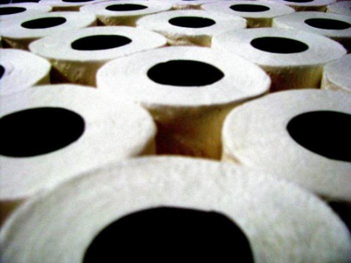 бумаге-туалетной-фактов-это интересно-познавательно-картинки/4387736_3 (700x524, 35Kb)