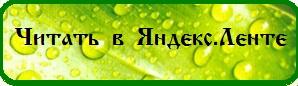4262894_chitat_v_yandeks_lente_2_ (298x86, 17Kb)