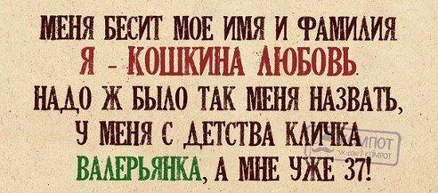 smeshnie_kartinki_138071263954 (492x217, 109Kb)
