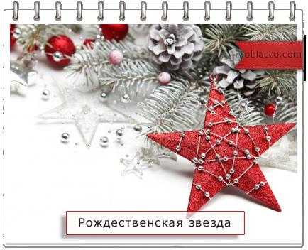 Рождественская звезда из газетных трубочек Мастер класс/3518263_ (434x352, 242Kb)