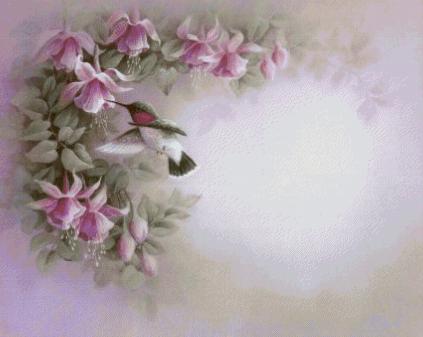 колибри и фуксия - Самое