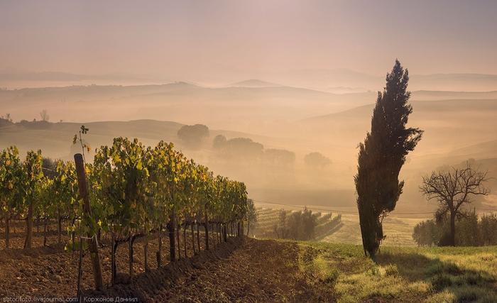 тоскана италия фото 7 (700x427, 202Kb)