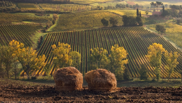 тоскана италия фото 11 (700x394, 292Kb)