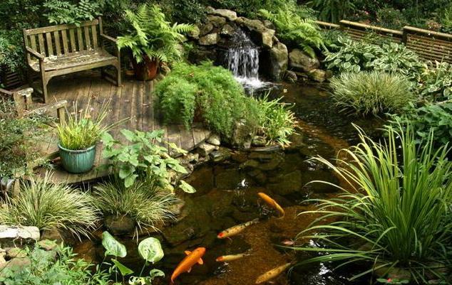 Water_gardens_003 (634x401, 402Kb)
