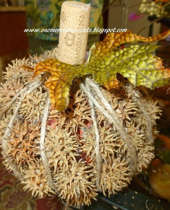 Интересные тыквы и осенняя флористика (5) (566x700, 353Kb)