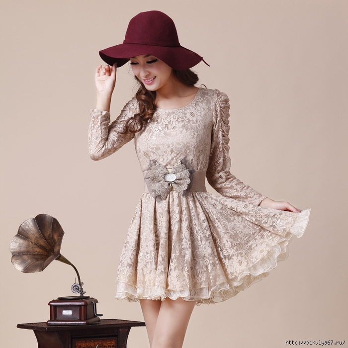 2013-Autumn-Slim-Lace-One-piece-Dress-Fashion-Beautiful-Long-sleeve-Basic-Dress (700x700, 278Kb)