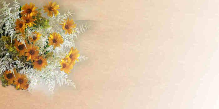 схемка на ЛИру желтые цв (700x350, 14Kb)