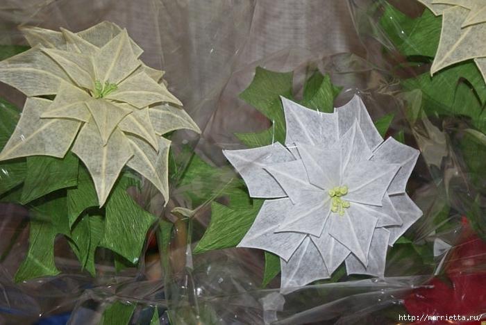 Рождественская звезда ПУАНСЕТТИЯ из гофрированной бумаги (41) (700x468, 238Kb)