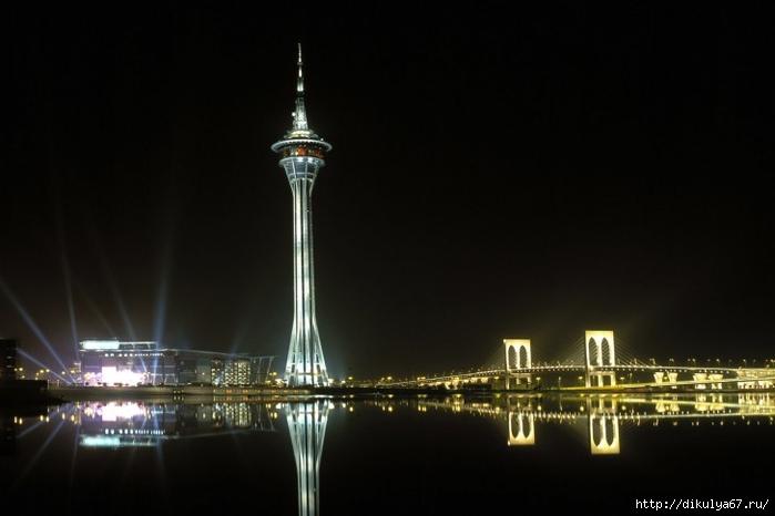 Macau-tower-at-night-China-485x728 (700x466, 131Kb)