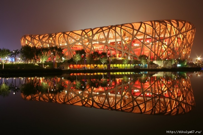 National-Stadium-Beijing-China-HD-Wallpaper-485x728 (700x466, 243Kb)