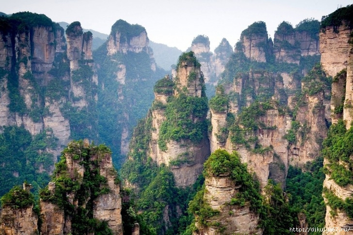 Cliff-Pillars-Mountain-Nature-China-485x728 (700x466, 333Kb)