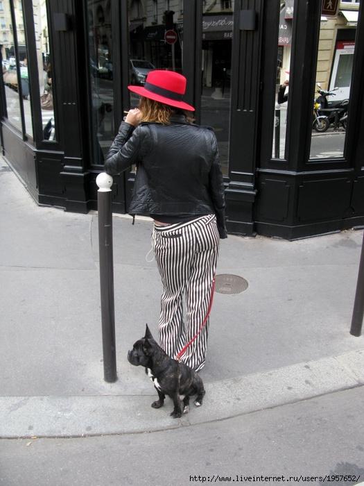 Женщина с собачкой в Париже (525x700, 233Kb)