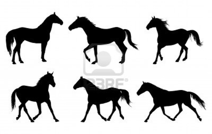 4053417-vector-set-of-horse-silhouette (700x442, 93Kb)