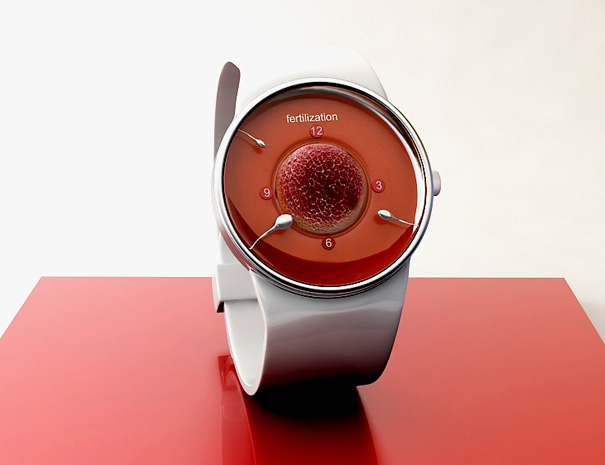 4027137_fertilization_watch (605x465, 55Kb)