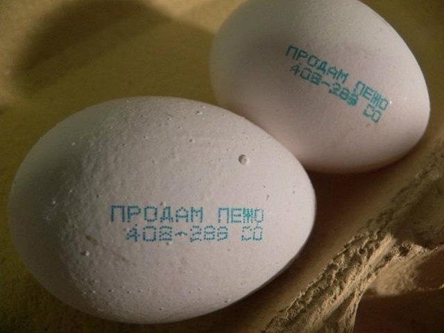 99524171_1511901_eggs (640x480, 158Kb)