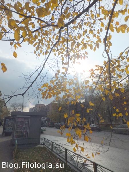 Пустая лавочка и голые деревья./3241858_osenneu1 (450x600, 267Kb)/3241858_osenneu2 (450x600, 227Kb)