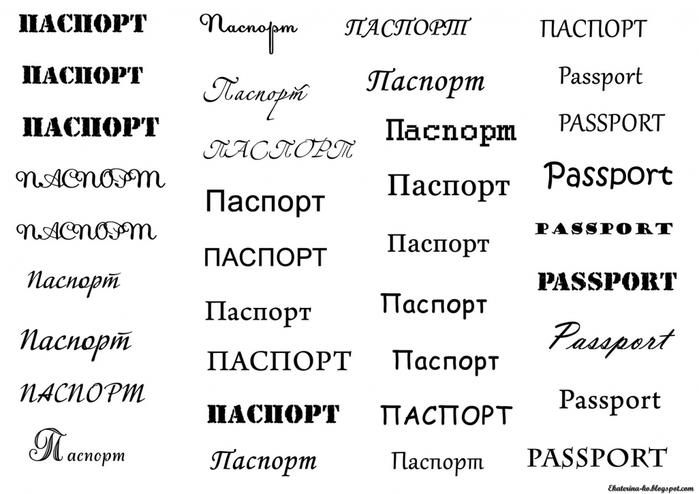 3552476_pasport (700x494, 161Kb)